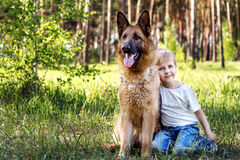 The boy and the dog for a walk Stock Photography