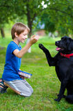 Boy with dog Royalty Free Stock Photography