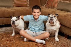 Boy and Dogs Stock Photos