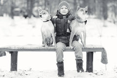 Boy and dogs in winter park Stock Image