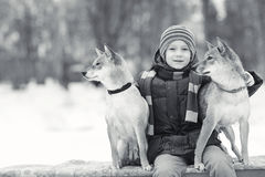 Boy and dogs in winter park Stock Images