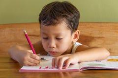 Boy doing his homework. A boy doing his homework Stock Photos
