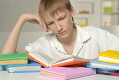 Boy is doing homework Stock Images