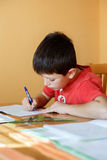 Boy doing school homework Royalty Free Stock Photography
