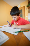 Boy doing school homework Royalty Free Stock Images