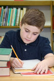 Boy Doing School Work Stock Images