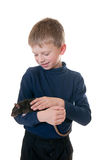 Boy with a domestic rat Royalty Free Stock Images