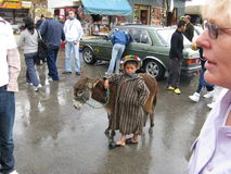 Boy with donkey. Young boy in traditional dress, with donkey on display for tourist photos, in Morocco Stock Image
