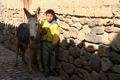 Boy with a donkey Royalty Free Stock Image