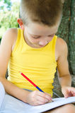 Boy drawing. At the park Stock Photography