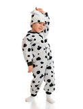 Boy   dressed in Dalmatian  suit Stock Image