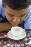 Boy drink hot green tea Stock Image