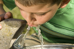 Boy drinking. Little boy drinking from a fountain stock photo
