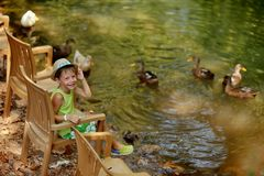 Boy and duck Royalty Free Stock Photo