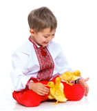 Boy and ducklings Stock Images