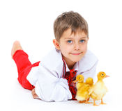 Boy and ducklings Royalty Free Stock Photos