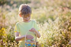 Boy at easter time. Cheerful little boy holding basket full of easter eggs after egg hunt at beautiful blooming field at spring time Royalty Free Stock Images