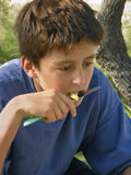 Boy eat apple. Portrait of a handsome boy with an imaginary view enjoys eating apple with knife Royalty Free Stock Photography