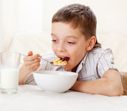Boy eat breakfast at home Stock Photography