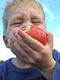 Boy eating apple Stock Image