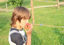 Boy eating an apple Stock Photography