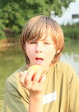 Boy eating an apple Royalty Free Stock Image