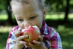 Boy eating apple Royalty Free Stock Image