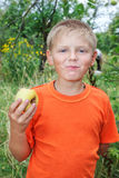 Boy eating apples in the garden. Stock Image