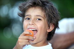 Boy eating an apricot Stock Image