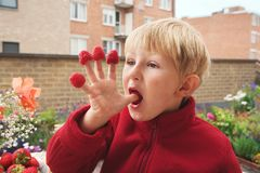 Boy eating berries. In the garden Stock Image