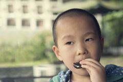 Boy eating biscuit Royalty Free Stock Photos