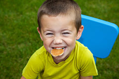 Boy eating biscuit Royalty Free Stock Image