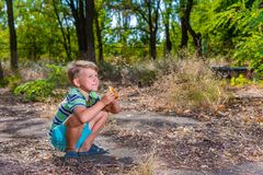 A boy is eating a bun in the woods, squatting. royalty free stock images