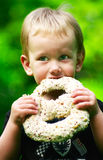 Boy eating a chocolate pretzel. Little boy eating a chocolate pretzel royalty free stock photo