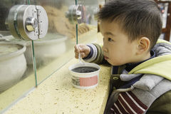 Boy eating congee Stock Images