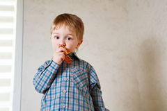 Boy eating a cookie Stock Image