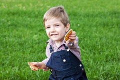 Boy eating cookies Stock Photography