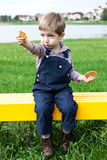 Boy eating cookies Royalty Free Stock Images