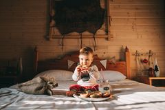 Boy eating cookies in bed. Little boy eating cookies in bed royalty free stock photography