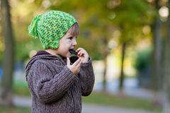 Boy, eating cookies Royalty Free Stock Photography