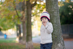 Boy, eating cookies Royalty Free Stock Images