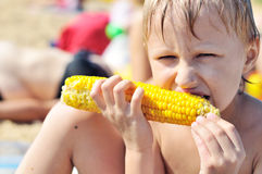 Boy eating corn Stock Photos