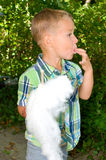 Boy eating cotton candy Stock Images