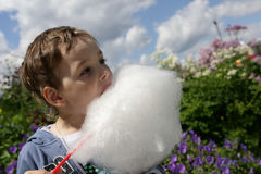 Boy eating cotton candy Royalty Free Stock Image