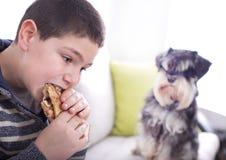 Boy eating and dog watching at him Royalty Free Stock Photography