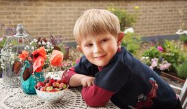 Boy eating fresh berries. Boy eating berries in the garden Stock Photography
