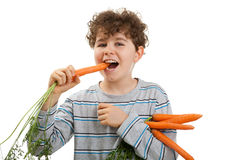Boy eating fresh carrot Stock Photos