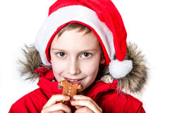 Boy eating gingerbread man. Stock Image