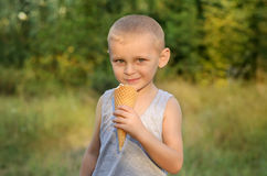Boy eating ice cream. Cute little boy eating ice cream in a park Stock Image