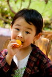 Boy eating loquat. A picture of a little chinese boy eating loquat and making faces Royalty Free Stock Photos